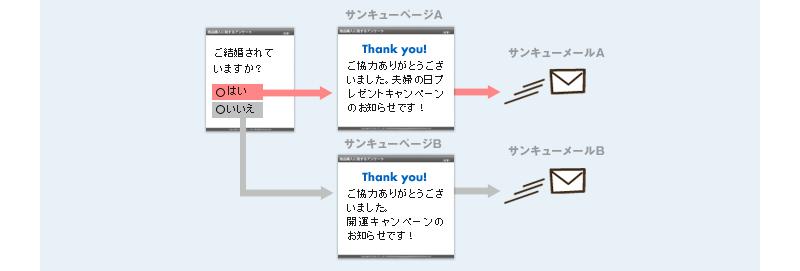 3)サンキューメールの分岐
