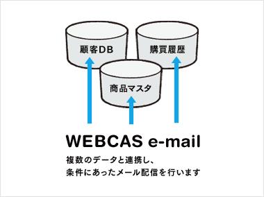 WEBCAS e-mailはデータベースが分散していてもOK!必要な情報だけ参照&分析し、条件にあったメール配信行います。