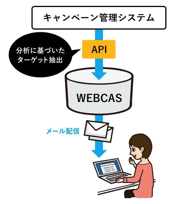 キャンペーン管理システムとの連携配信のイメージ